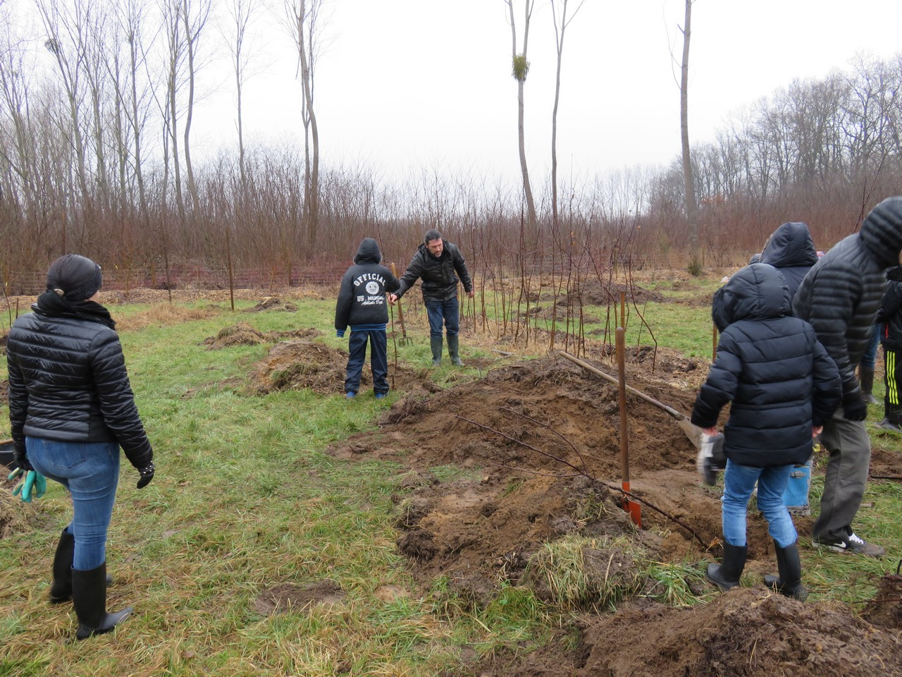 Plantation de pommiers au jardin ecole de boz for Plantation au jardin